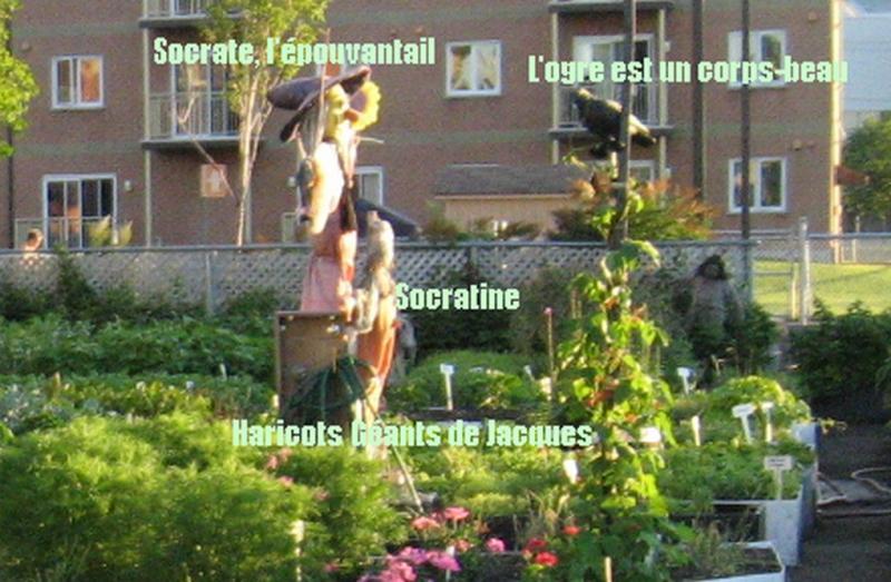Le Jardin à la brunante (2011) Jardin collectif du Patro Img_2126-2b71af5